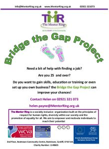 Bridge the gap flyer